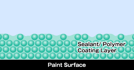 Sealant/ Polymer Coating